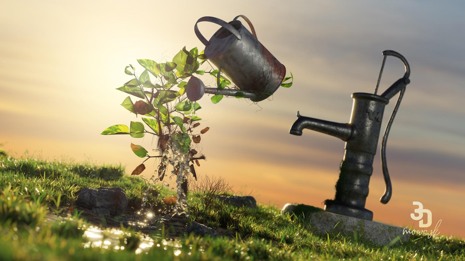 Rastlina Potosovec zlatý, krhla s vodou a záhradná pupma
