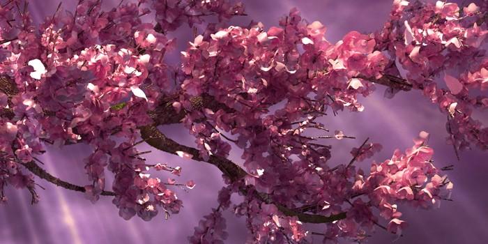 Detial koruny stromu zložený z bitmapových listov